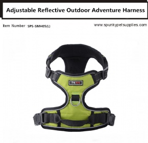 Dog Outdoor Adventure Harness Green